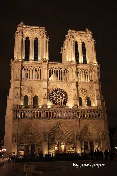 night-notredam13