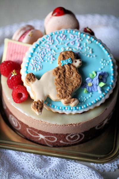 poodle-cake4