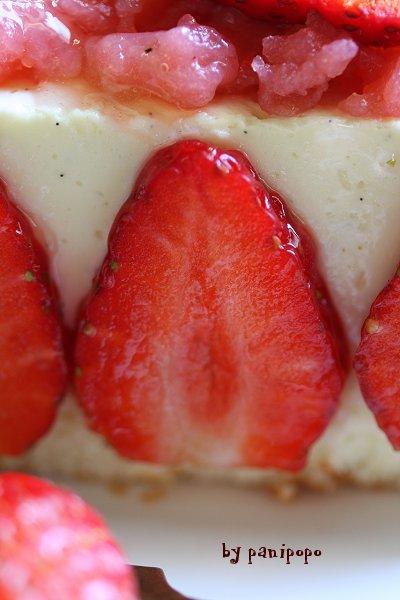 diplomat-fraisier5