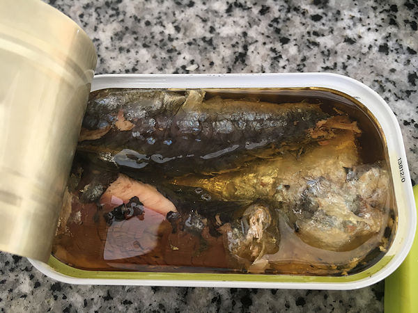 sardine-pasta2