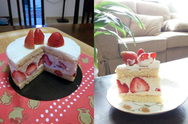class-fraisier5