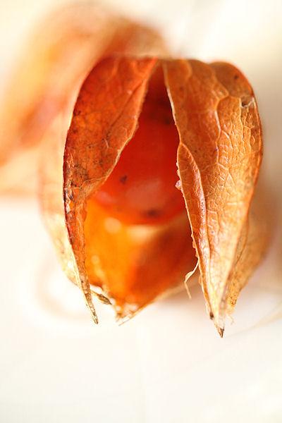 tarmeric-pumpkin-cake7.jpg