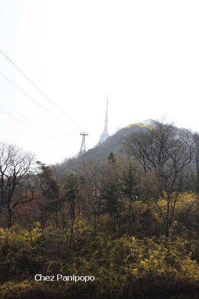 spring-seoul2