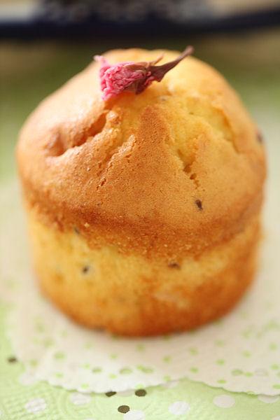 sakura-cupcake4