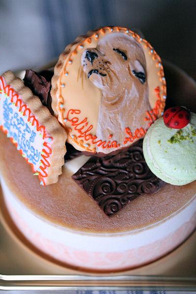 seal-cake.jpg