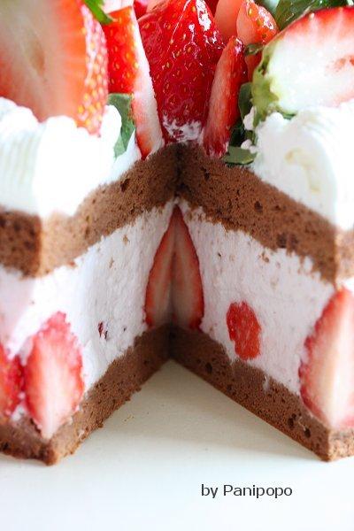 fraise-mikecake6