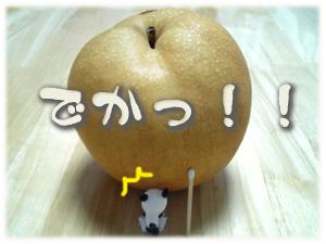 でっけー梨