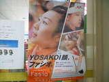 YOSAKOI Fasio