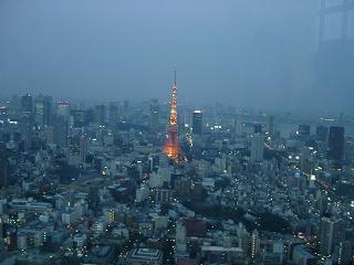 東京タワ子