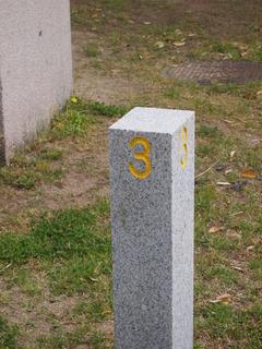P4307882