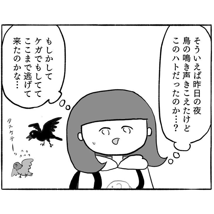IMG_6909