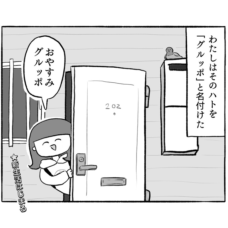 IMG_6911