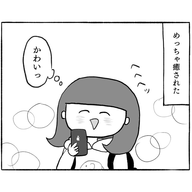 IMG_6904
