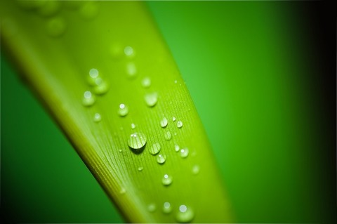 droplets-195838_640