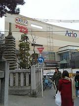ario亀有