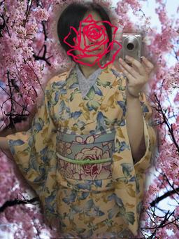 蝶々柄春小紋2