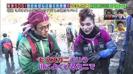 テレ東「池の水ぜんぶ抜く」正月SPを放送の結果wwwwwwww