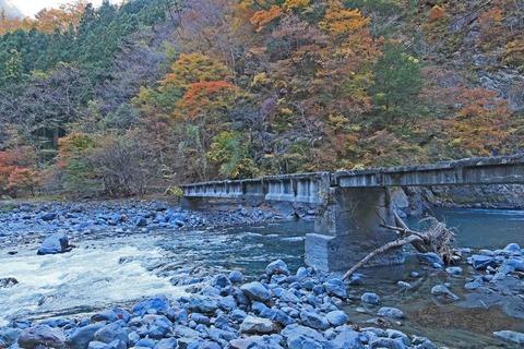 遠山森林鉄道2
