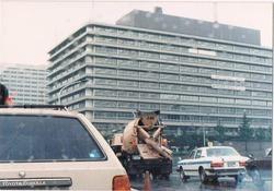 1982頃 千代田区 車窓より