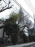 下井草カトリック教会1