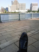 中央の白い物体が水上バス・下方の黒い物体は我が靴