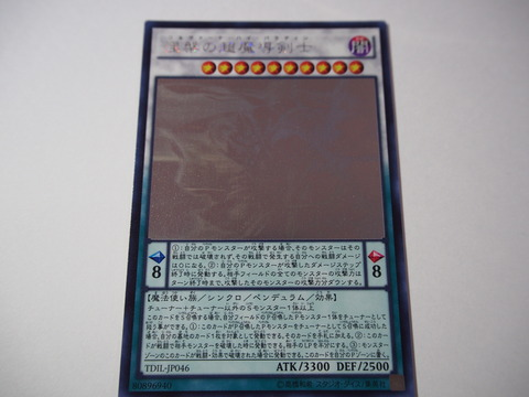 P4092093