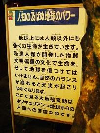 PA074772.jpg