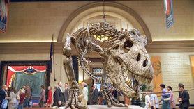 teiranosaurusu