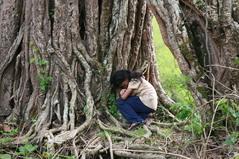 村の木の洞で