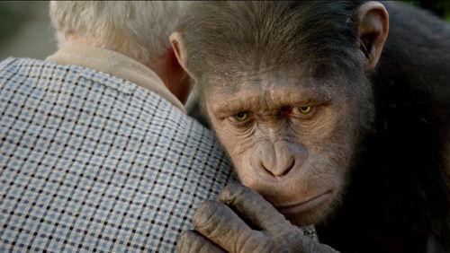 猿の惑星、2