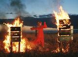 蜂に刺されて火をつける