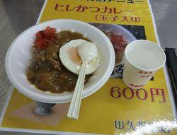 ヒレかつカレー(玉子入り)