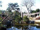 旧吉田邸5