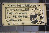 桜田ネコ6
