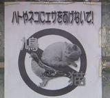 エサやり禁止01