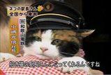 たま駅長01