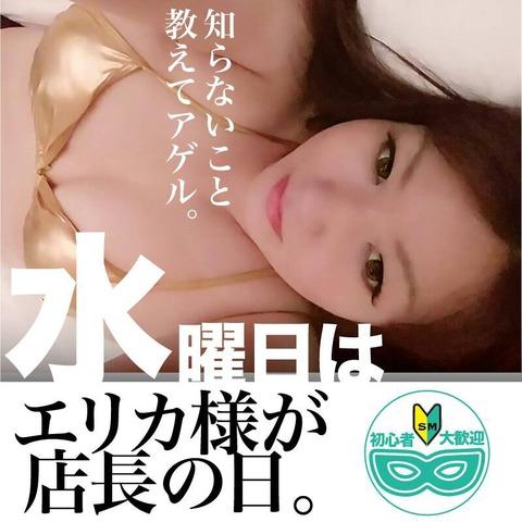 S_7132790067033