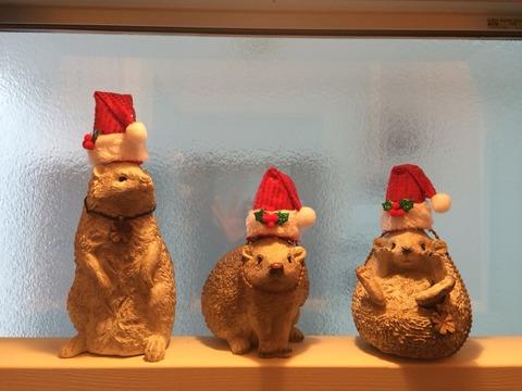 三兄弟のクリスマス♪