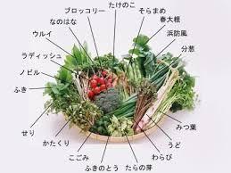 春野菜で春の体作り。花粉症でお困りの方へ