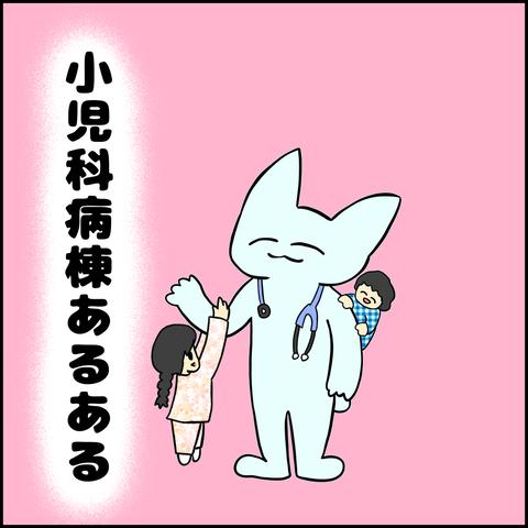 IMG_0241