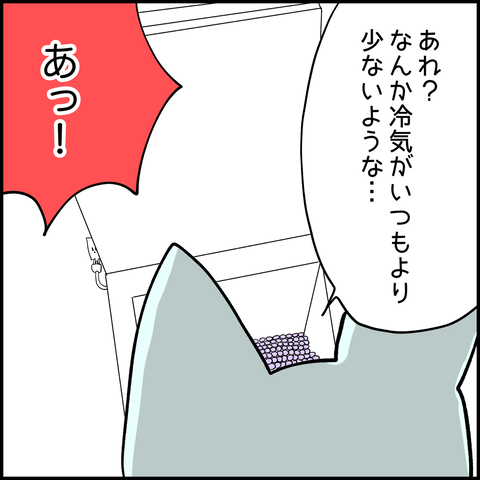 IMG_3462
