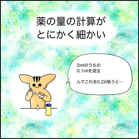 IMG_0385