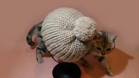 ポンポン付きニット帽 *parineko*