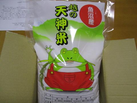 20160617東京一番フーズ