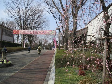 123府中市郷土の森博物館3