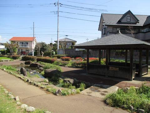 10日酸公園3