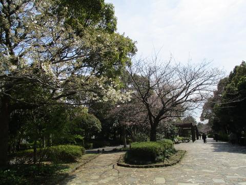 92清新町緑道3