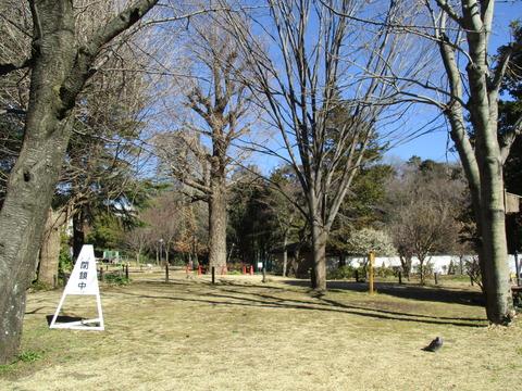 28菅刈公園内3