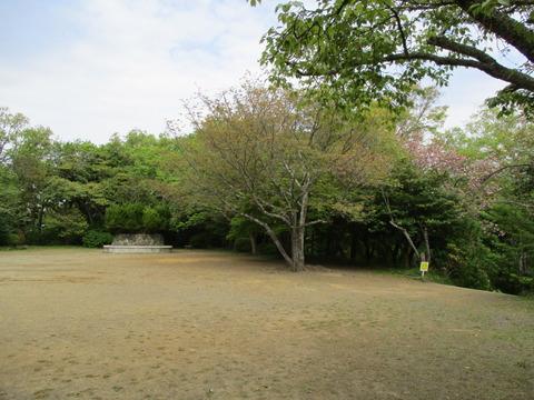 66広場・桜