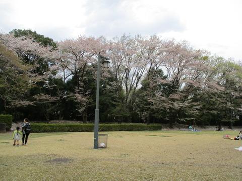 200-1塚田曲輪跡1-1